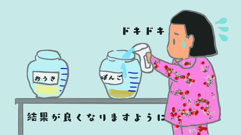mizumashi